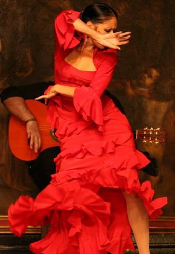 flamenco-114342_L